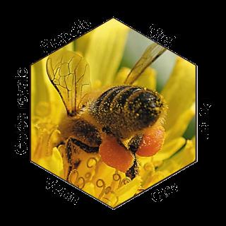 Les produits de la ruche pour le bien-être et la ..