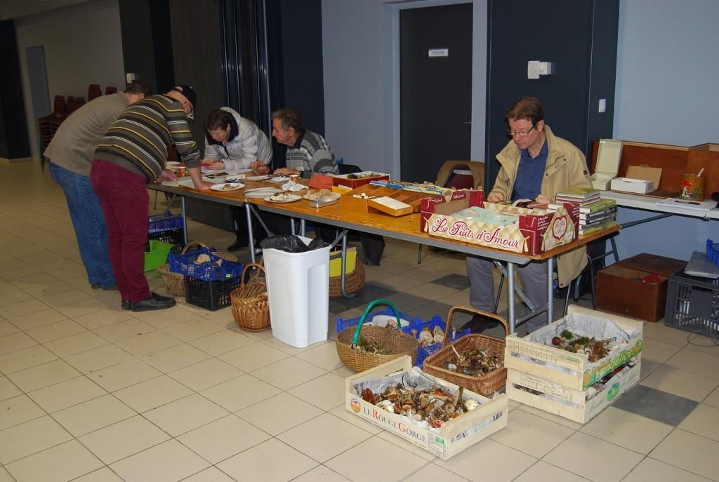 Expo Mycologique et TROC VERT